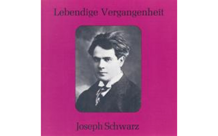 Joseph Schwarz-31