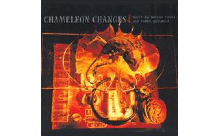 Chameleon Changes-31