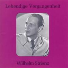 Wilhelm Strienz-21