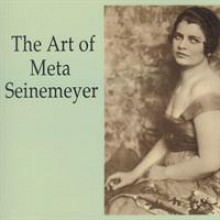The Art of Meta Seinemeyer-20