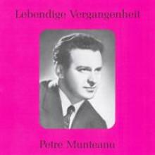 Petre Munteanu-20