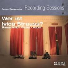Wer ist Ivica Strauss-20