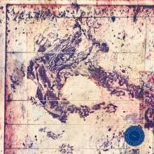 Erd´ (Vinyl) radio.string.quartet and Roland Neuwirth-21